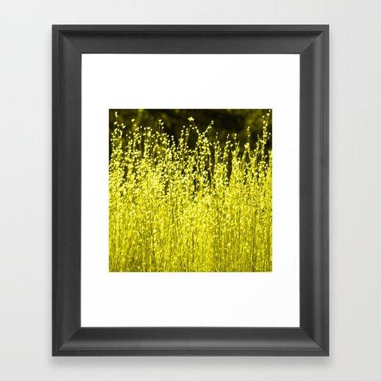 Grasses 2 Summer Sun Framed Art Print