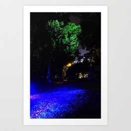 Face in the Tree Art Print