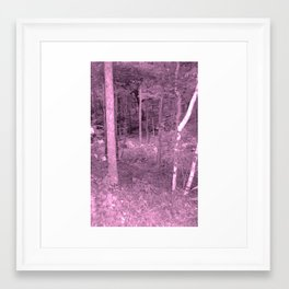 beauty of nature 7 Framed Art Print