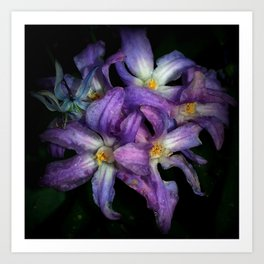 Distressed Flowers Art Print