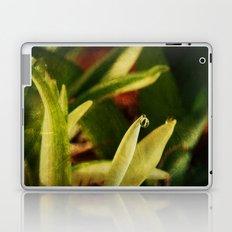 Dew Drop Laptop & iPad Skin