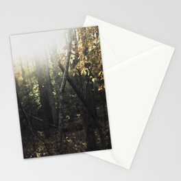 Forest 001 Stationery Cards
