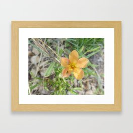 Orange Glad We Met? Framed Art Print