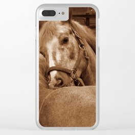 Abe and Bumper Clear iPhone Case