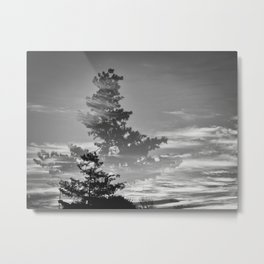 322 | west texas Metal Print