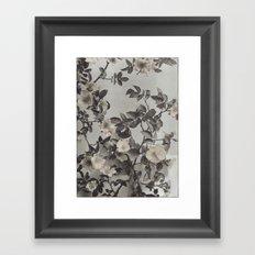 Vintage Hand Colored Dogwood Flower Framed Art Print