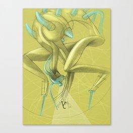 De los vuelos | Of flights { n°_ 003 } Canvas Print
