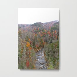 Fall Forest, Vertical Metal Print