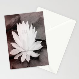 Lily Pad  Photo Bomber Stationery Cards