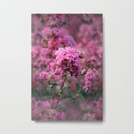 Playful Hot Pinks Metal Print