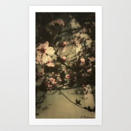 Sweet smell of spring Art Print