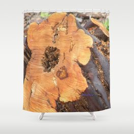 TEXTURES - Manzanita in Drought Conditions #2 Shower Curtain