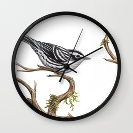 Black-and-White Warbler (Mniotilta varia) Wall Clock