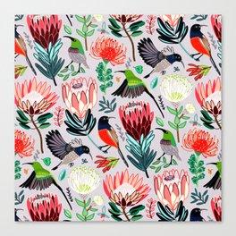 Sunbirds and Proteas On Grey Canvas Print