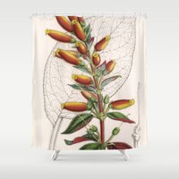 botanical Shower Curtains featuring Botanical by Connie Goldman