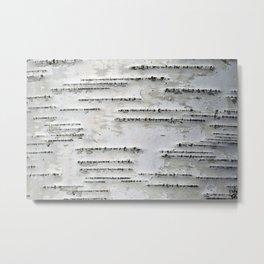 Black and White Birch Bark Metal Print