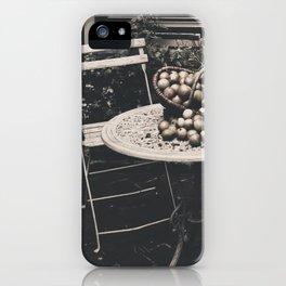 Lovely Garden France iPhone Case