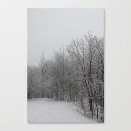 Partout, de la Neige (Everywhere, Snow) Canvas Print