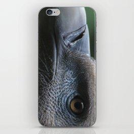 Griffon Vulture iPhone Skin