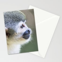 Squirrel Monkey - Animal Photography Stationery Cards
