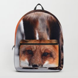 Small Friend || Backpack