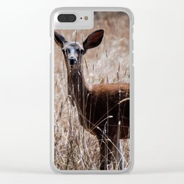 A Deer in Summer Clear iPhone Case