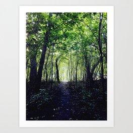 A Hidden Path Art Print