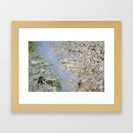 Coral shore Framed Art Print