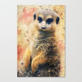 Mrs. SURICATE Canvas Print