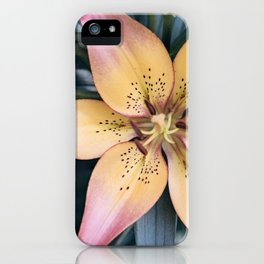 Lily Flower Photography, Pink Peach Lilies Flowers, Nature Botanical Photography iPhone Case