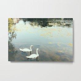 London - Swans Metal Print