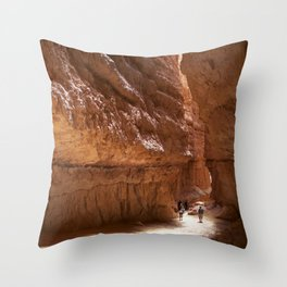 My Kind of Wall Street Throw Pillow