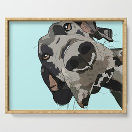 Great Dane in your face (teal) Serving Tray