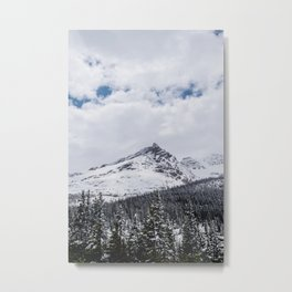 Landscape mountain view and pine forest Metal Print