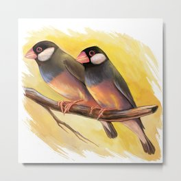 Java Sparrow finches realistic painting Metal Print