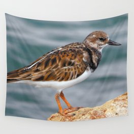 Profile of a Ruddy Turnstone Wall Tapestry