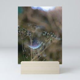 Spiderwebs and Raindrops Mini Art Print