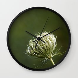 Closed Queen Anne's Lace Wall Clock