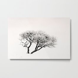 The Tree on the Hill Metal Print