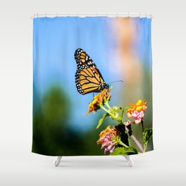 Monarch Visitor Shower Curtain