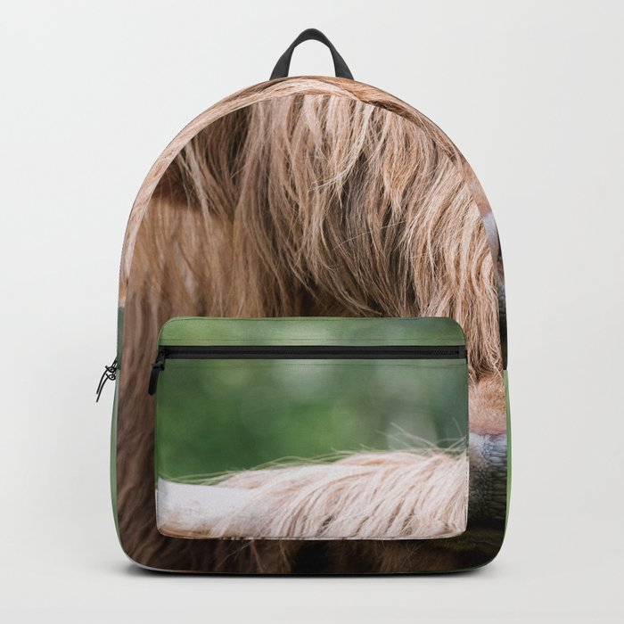 Portrait of a cute Scottish Highland Cattle Backpack