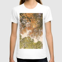 Autumn Trees high abouve T-shirt