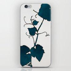 Teal Grape Leaves iPhone & iPod Skin