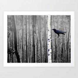 Black Bird Crow Tree Birch Forrest Black White Country Art A135 Art Print