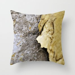 Chipped Throw Pillow