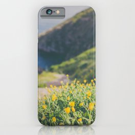 The way I see it iPhone Case