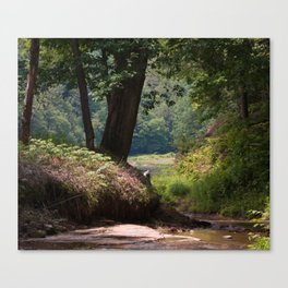 Clarion River at Blyson Run Canvas Print
