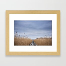 Lake Kaņieris. || Latvia. || Real Life. || Winter morning. || Bent. || Nature. || Landscape. Framed Art Print