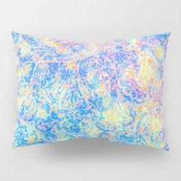 Watercolor Paisley Pillow Sham