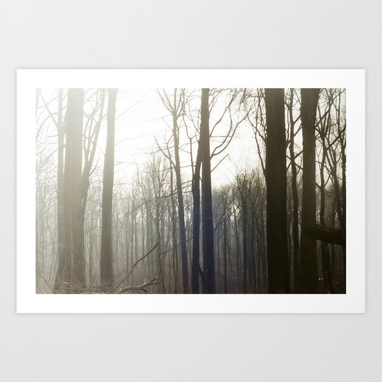 Winter 4 Art Print